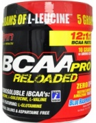 S.A.N. BCAA pro reloaded
