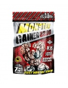 Vit. O. Best MONSTER GAINER 2200